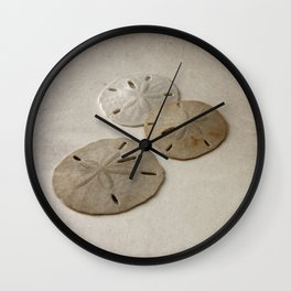 Vintage Sand Dollars Wall Clock