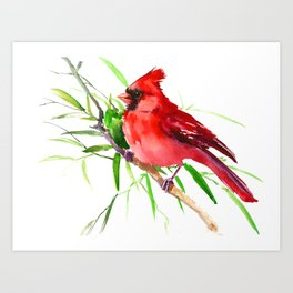Cardinal Bird Art Print