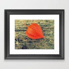 Orange Fall Framed Art Print