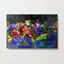 Rainbow Flowers Metal Print