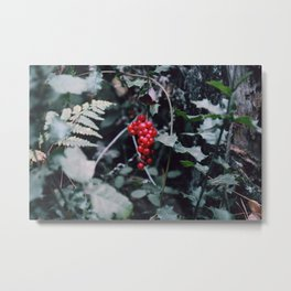 Wild berries in the forest Metal Print