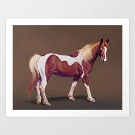 Sensitive Pony Art Print