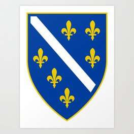 Coat of arms of Bosnia and Herzegovina Art Print