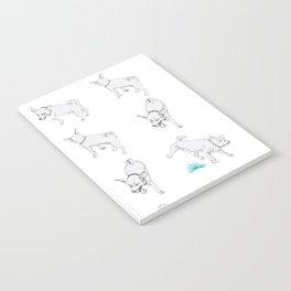 Karson the Chihuahua Notebook