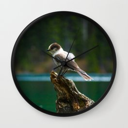Grey Jay at Joffre Lakes Wall Clock