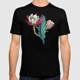 Flowering cactus IV T-shirt