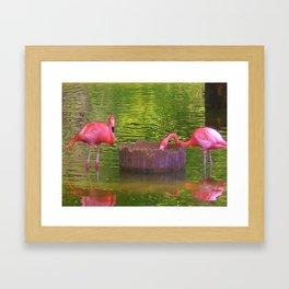 Pink times 2 Framed Art Print