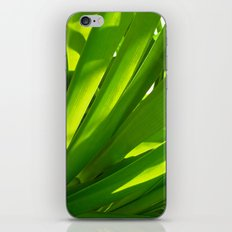 green grass iPhone & iPod Skin