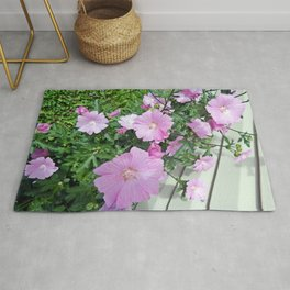 Pink Musk Mallow Bush in Bloom Rug
