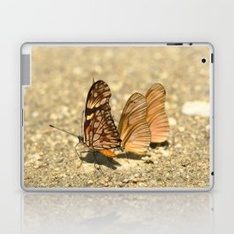 butterfly (Dione juno and Dryas julia) Laptop & iPad Skin