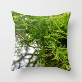 Conifer Branches Throw Pillow