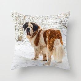 St Bernard dog in the snow Throw Pillow