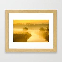 Mist of Gold Framed Art Print