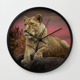 African Female Lion in the Grass at Sunset Wall Clock