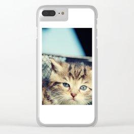 CAT, KATZE Clear iPhone Case