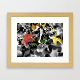 colors in contrast Framed Art Print