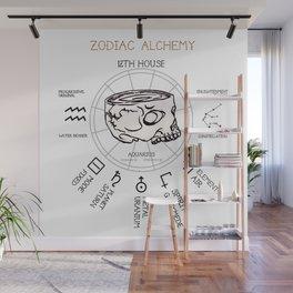 Aquarius Skull Zodiac Alchemy Element Chart Wall Mural