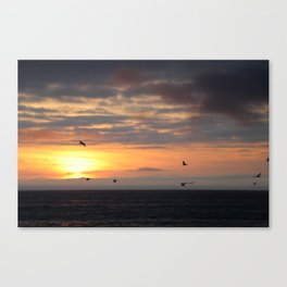 Socal's finest Canvas Print