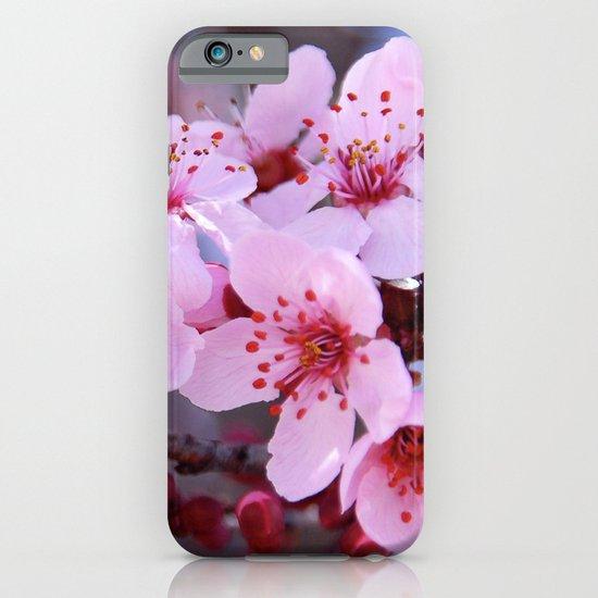 Flowers iPhone & iPod Case