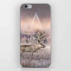 Stillness of Winter iPhone & iPod Skin