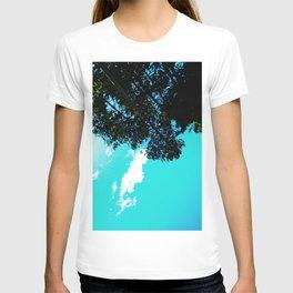 Coquet Minnesota T-shirt