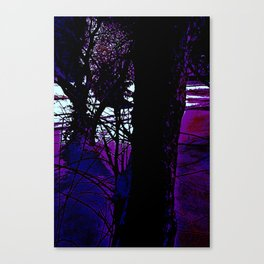 Snow and Limbs in the Dark Canvas Print