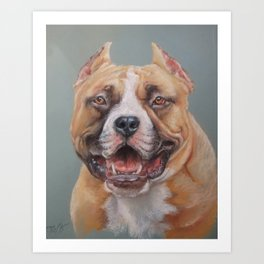 Happy Dog SMILING AMSTAFF FACE Cute pet portrait Pastel drawing Decor for Dog lover Art Print