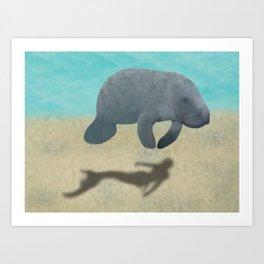 Manatee Shadow Art Print