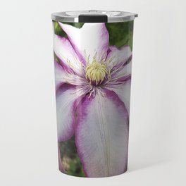 Clematis - Stunning two-tone flowers Travel Mug