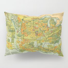 Vintage United States Agricultural Map (1922) Pillow Sham