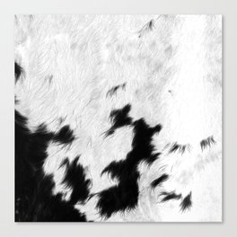 Spotted Cowhide Canvas Print
