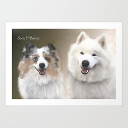 Sven & Buddies; Sheltie & Samoyed Portrait Art Print