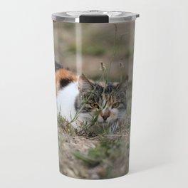 Multicolor cat is playing hide and seek Travel Mug