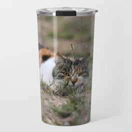 Multicolor cat is playing hide and seek Travel Mug