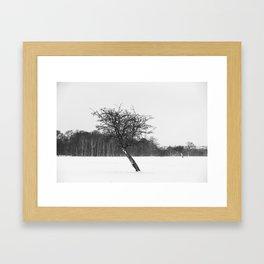 Tree in the winter (RR 273) Framed Art Print
