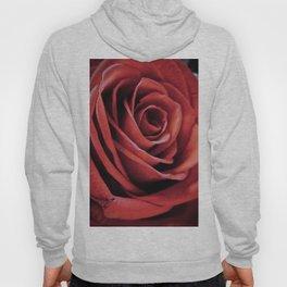Dark Red Rose Close Up Hoody
