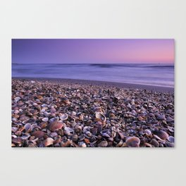 The Beach Of The Shells Canvas Print