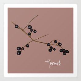 Wild privet Art Print