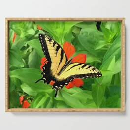 Butterfly on Zinnia 3 Serving Tray