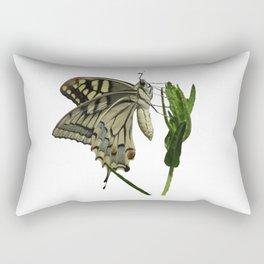 Scarce Swallowtail Rectangular Pillow