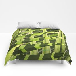 TEXTURES -- Palm Fronds Intersecting Comforters