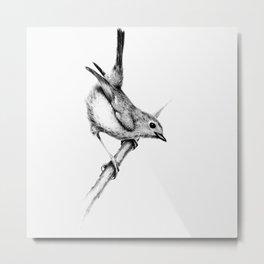 The only Bird Metal Print