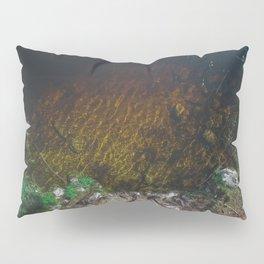 Summer Lake - Aerial Photography Pillow Sham
