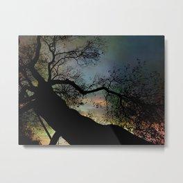 Night Fall by The Tree Metal Print