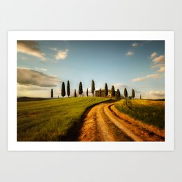 Cypresses of Toskany Art Print