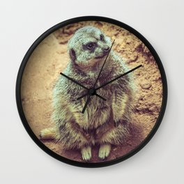Furry Meerkat Sitting Watching Lincoln Park Zoo Chicago Wall Clock