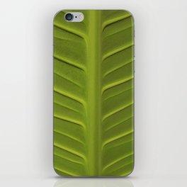 Leaf 3 iPhone Skin