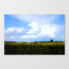 Earth and Heaven Canvas Print
