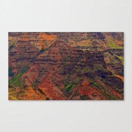 The Faces of Waimea Canyon Canvas Print