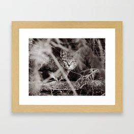 I See U ! Framed Art Print